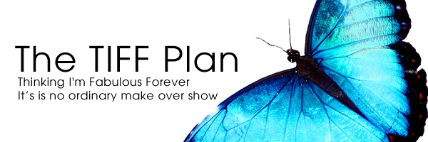 The Tiff Plan TV Show Web Logo